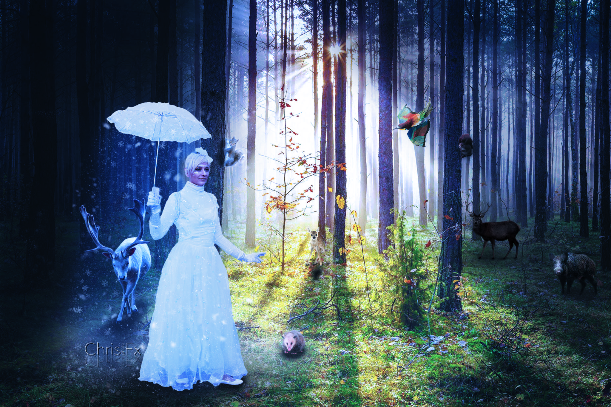 Fatina del bosco